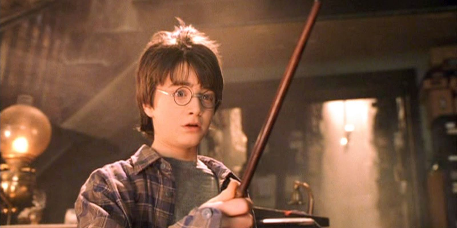 A real wand shop said potterheads aren 39 t real wizards for Harry potter wand owners