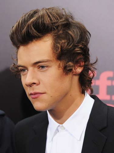 harry styles with hair 2013 one direction hair transformation one direction hair 5620